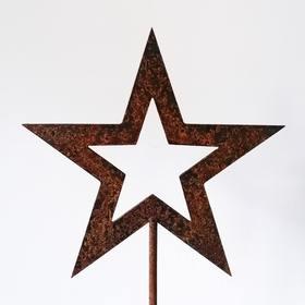 Gwiazda - świąteczna dekoracja ogrodowa